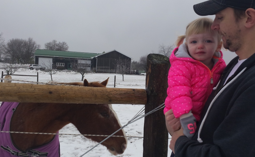 Day 314: Hippotherapy